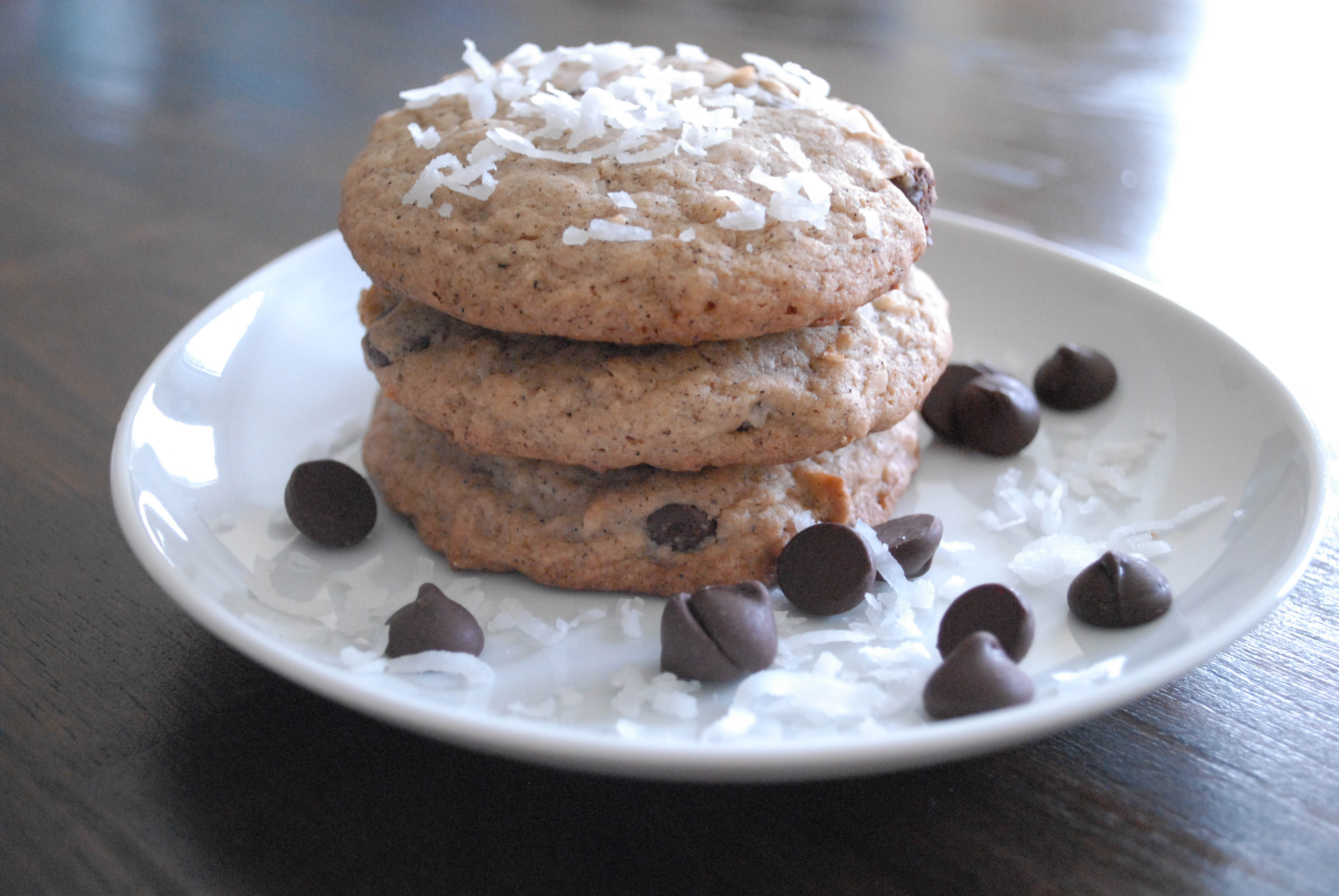 Can Dogs Eat Chocolate Chip Cookies - Pumpkin Chocolate Chip Cookies